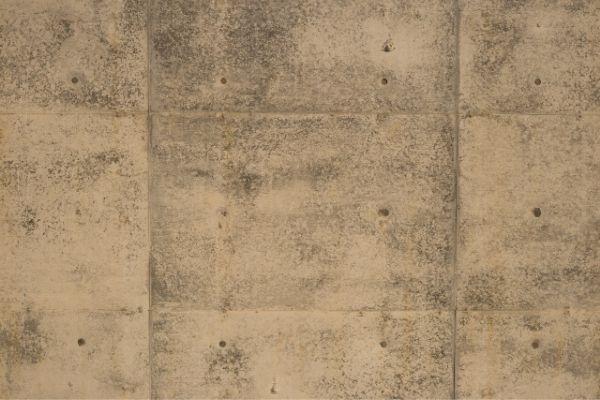 モルタル(コンクリート)壁を塗るときのコツ